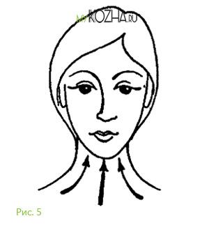 Направление движений при косметическом массаже 1