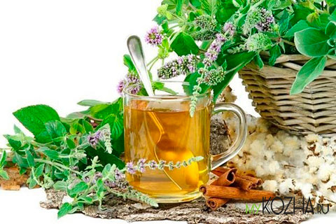 целебные травы для лечения стоматита