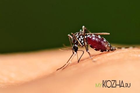 прыш-на-родинке-от-укуса-насекомых